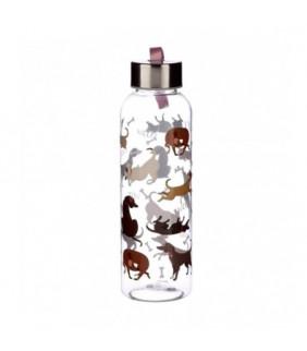 5-99 AÑOS. Cartas Batasaurus